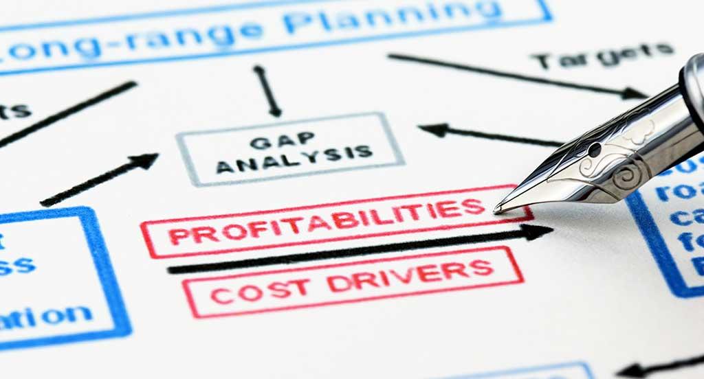 Profitability Epidemic Planning